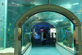 Marine_world14