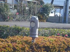 Aoshima2014010214