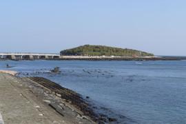 Aoshima2014010223
