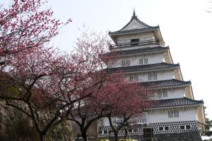 Shimabara201402024_2