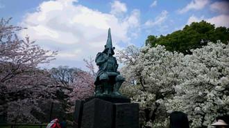 20170412sakura1